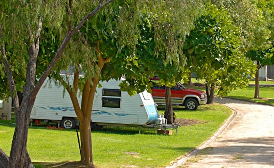 A Wangralea Caravan Park - Lismore Accommodation