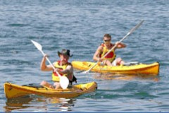 Manly Kayaks - Lismore Accommodation