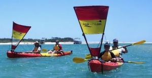 Kayak Noosa - Lismore Accommodation