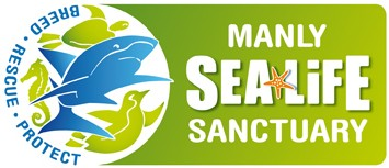 Manly SEA LIFE Sanctuary - Lismore Accommodation