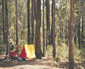 Lane Poole Reserve - Lismore Accommodation