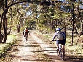 Bike About Mountain Bike Tours And Hire - Lismore Accommodation