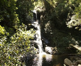 Macquarie Pass National Park - Lismore Accommodation