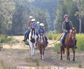 Horse Riding at Oaks Ranch and Country Club - Lismore Accommodation