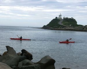 Newcastle Kayak Tours - Lismore Accommodation