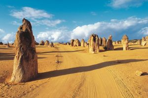 Pinnacles Desert Koalas and Sandboarding 4WD Day Tour from Perth - Lismore Accommodation