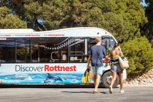 Rottnest Island Tour from Perth or Fremantle including Bus Tour - Lismore Accommodation