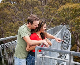 Valley of the Giants Tree Top Walk - Lismore Accommodation