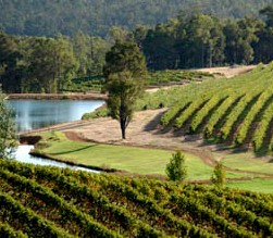 Brookhampton Estate Vineyard - Lismore Accommodation