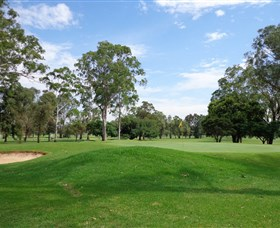 Singleton Golf Club - Lismore Accommodation