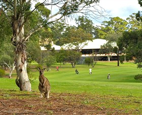 Pambula Merimbula Golf Club - Lismore Accommodation