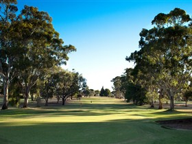 Loxton Golf Club - Lismore Accommodation