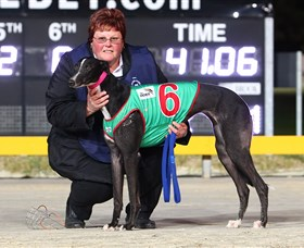 Bulli Greyhound Racing Club - Lismore Accommodation