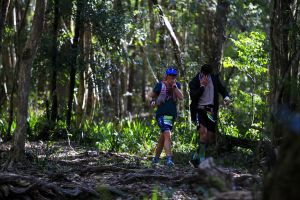 Elephant Trail Race - Lismore Accommodation