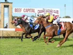 Casino Cup - Lismore Accommodation