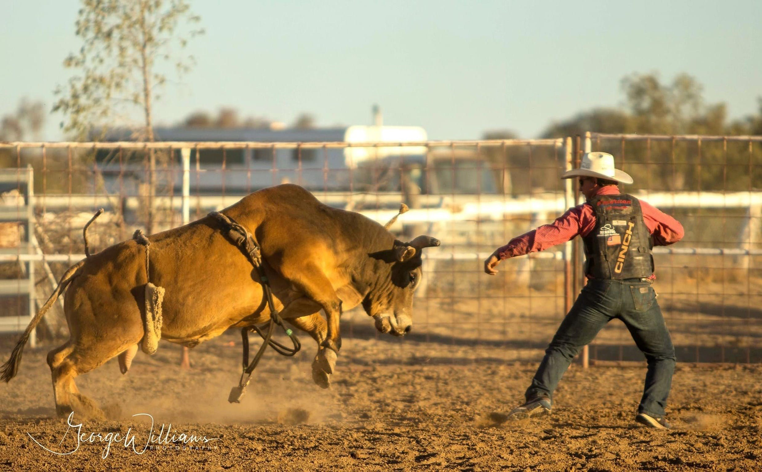 Walgett Charity Bushman's Carnival Rodeo and Campdraft - Lismore Accommodation