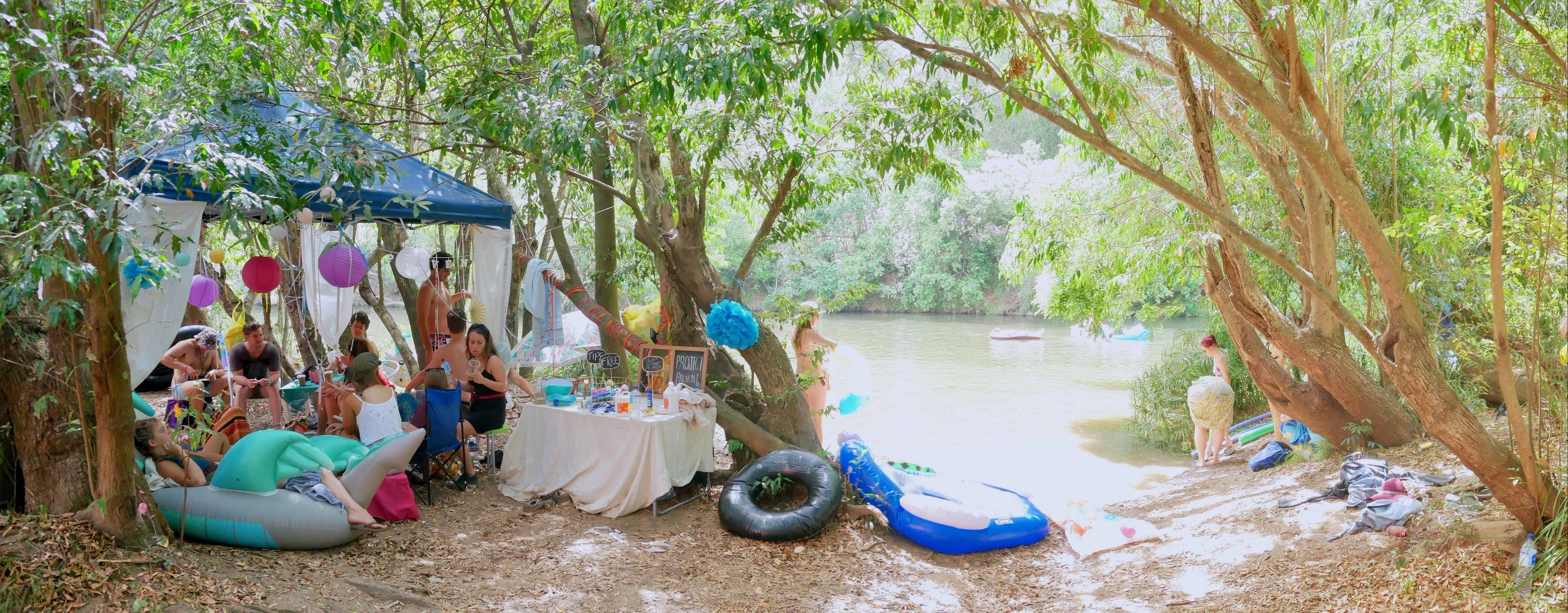 Jungle Love Festival - Lismore Accommodation