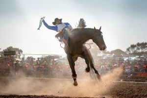 Rodeo by the Sea - Streaky Bay - Lismore Accommodation