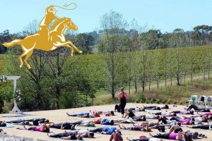 Yoga in the Vines - Lismore Accommodation