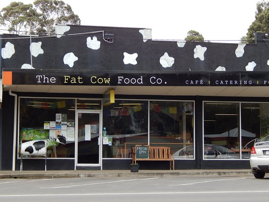 THE FAT COW Food Co. - Lismore Accommodation