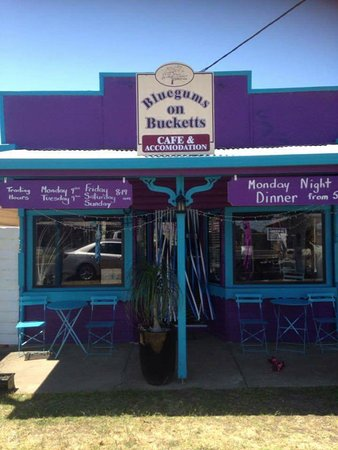 Bluegums on Bucketts - Lismore Accommodation