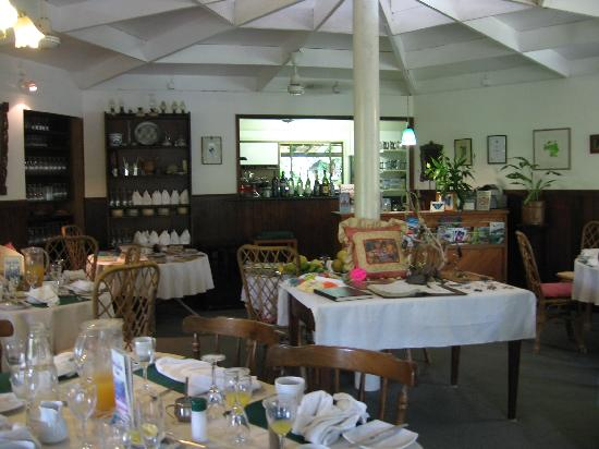 Daintree Tea House Restaurant - Lismore Accommodation