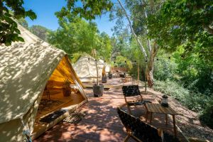 Castlemaine Gardens Luxury Glamping - Lismore Accommodation